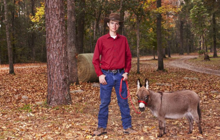 The shortest donkey in the world is 64.2 cm tall